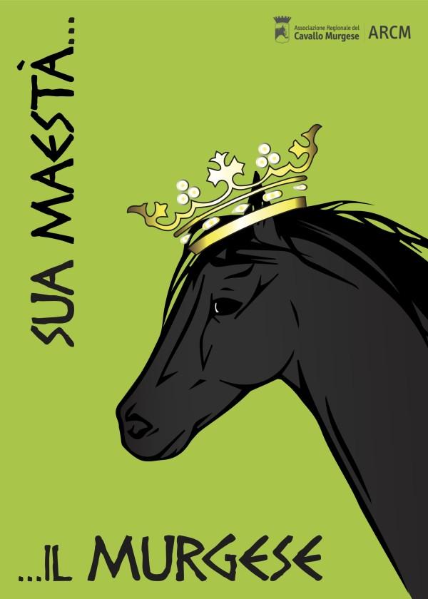 Cavallo murgese locandina (senza maschera di ritaglio)
