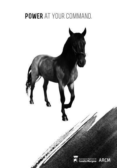 Manifesto Cavallo Murge 3 A4 INGLESE