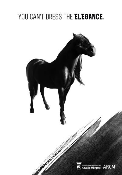 Manifesto Cavallo Murge A4 Inglese