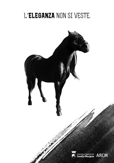 Manifesto Cavallo Murge A4