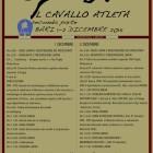 CAVALLO ATLETA ALL'HOTEL BARION CONGRESSI DI TORRE A MARE