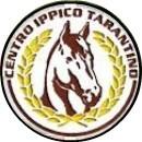 A TARANTO  I CAMPIONATI REGIONALI DI SALTO OSTACOLI 2016 – Il regolamento