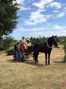 PUGLIA A CAVALLO per primavera a Cavallo