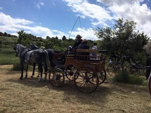 Parco Ortolini - Puglia a cavallo