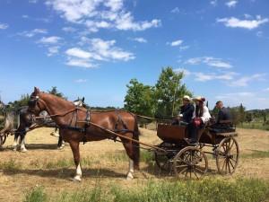 Primavera a cavallo Puglia A Cavallo