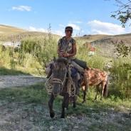 UNA DONNA CON DUE CAVALLI, dalla Mongolia a Crocovia con tappa in Italia